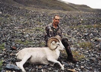 NWBG Sheep 04